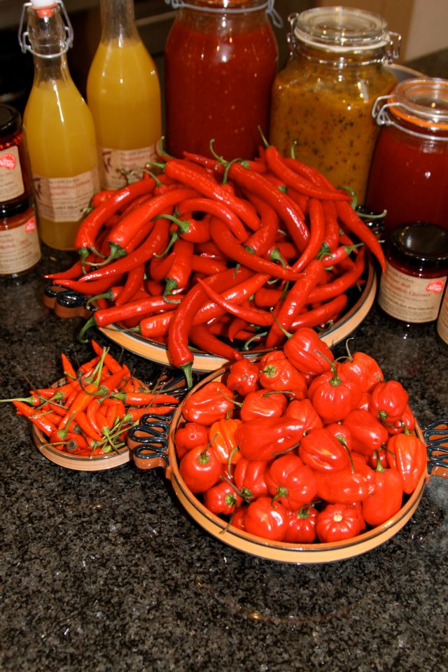 Featured Member: The Chilli Kitchen