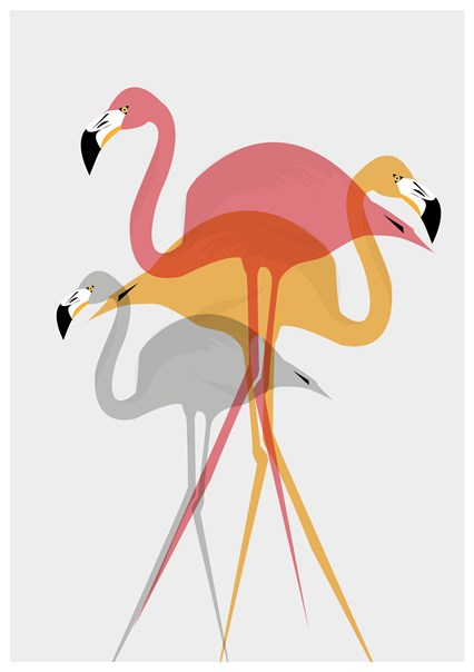 Flamingo by Ailsa Ash
