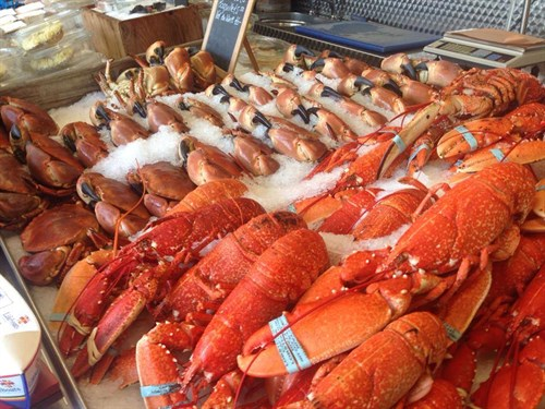 FreshFishCo_LocalLobsters