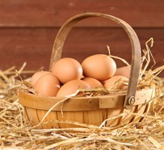 Cropped Egg Basket (3)